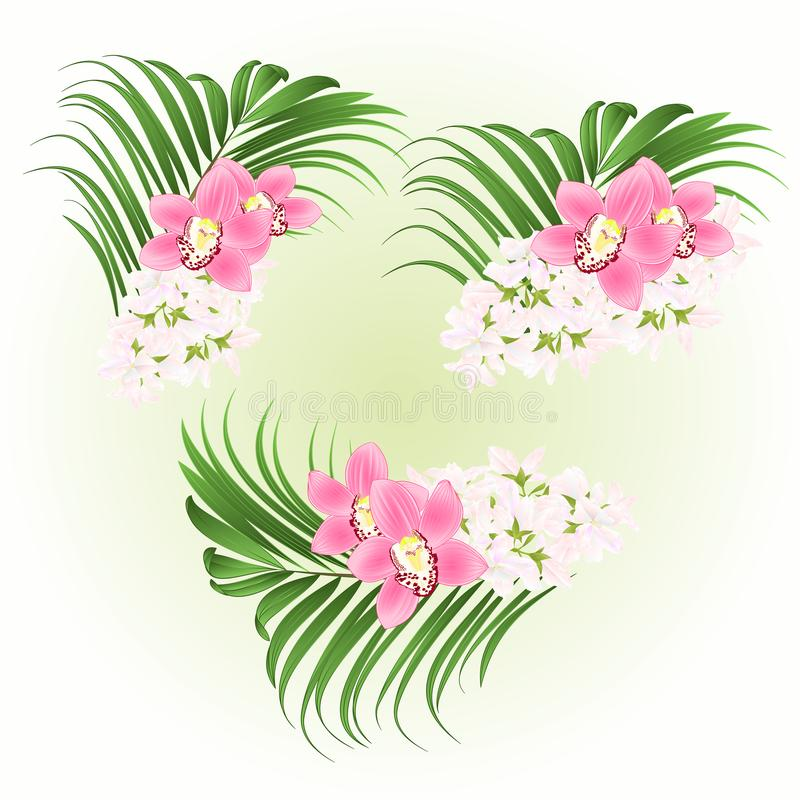 Bouquet with tropical flowers floral arrangement, with beautiful pink orchids cymbidium and palm vintage vector illustration edi royalty free illustration