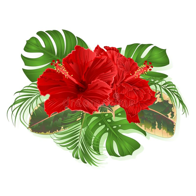 Bouquet with tropical flowers Hawaiian style floral arrangement, with beautiful hibiscus, palm,philodendron and ficus vintage vect vector illustration