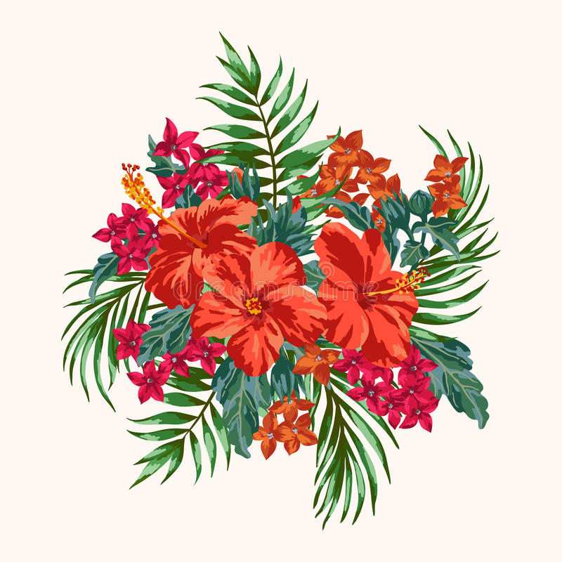 Bouquet Of Tropical Flowers. Stock Vector - Illustration of design ...