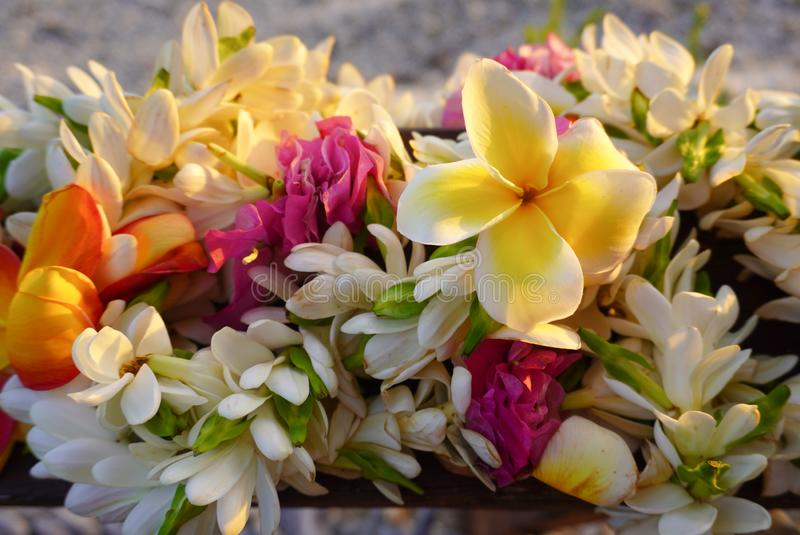 A bouquet of tropical flowers rests above a sandy beach in French Polynesia in the South Pacific. Close-up landscape view of a bouquet of tropical flowers rests royalty free stock image