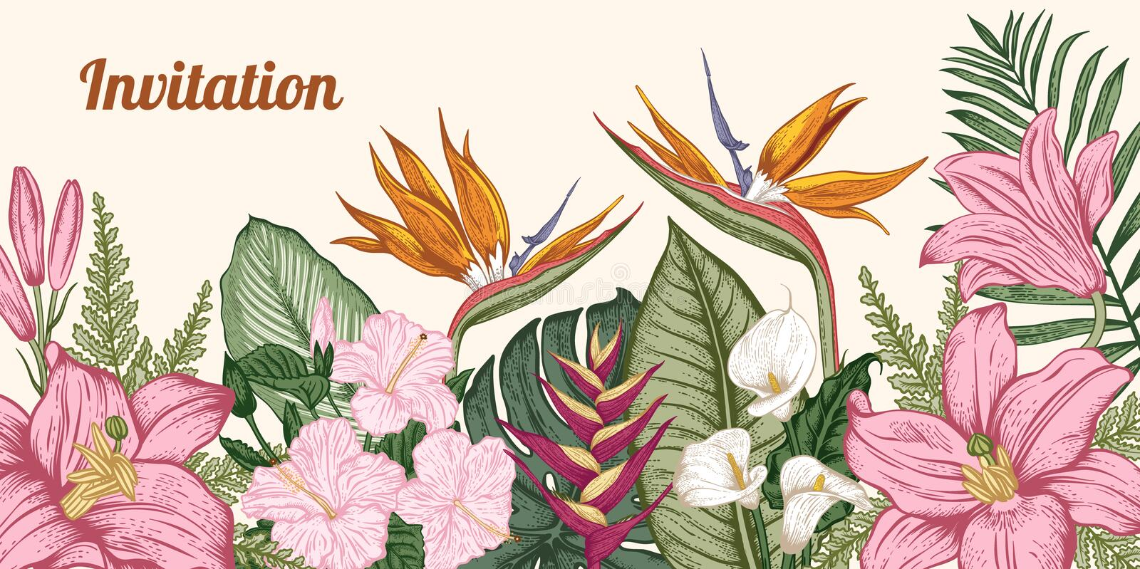 Bouquet of tropical flowers. Vector illustration. royalty free stock photography