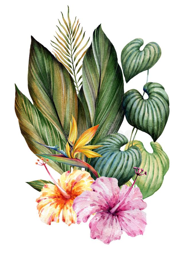 Bouquet of tropical leaves and flowers. Watercolor drawing. stock illustration