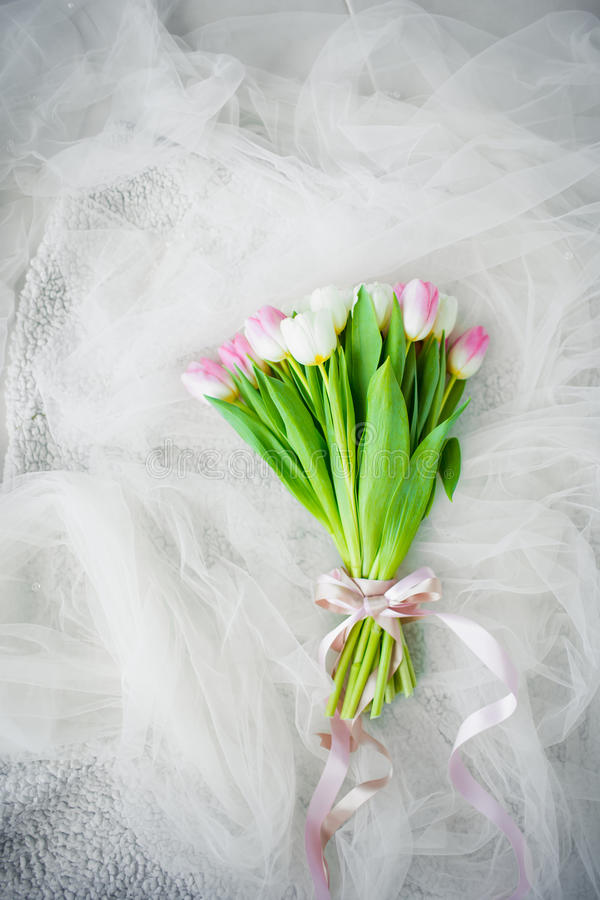 Bouquet of tulips with bow royalty free stock image