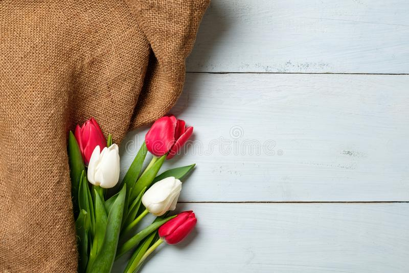 Bouquet of tulips and burlap fabric on light blue wooden table. Banner mockup for easter, womans day, mothers day. Spring holidays stock photo