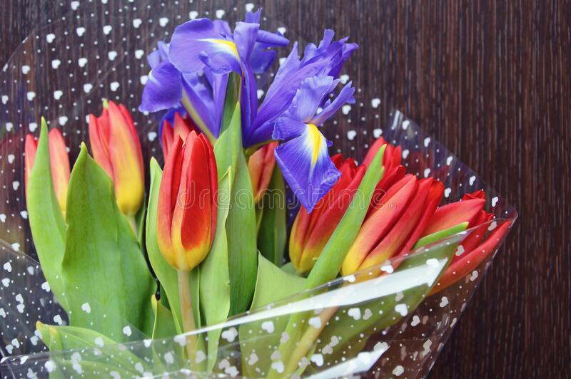 Bouquet of tulips on a dark background. beautiful flowers. Bright bouquet of tulips on a dark background. beautiful flowers stock images