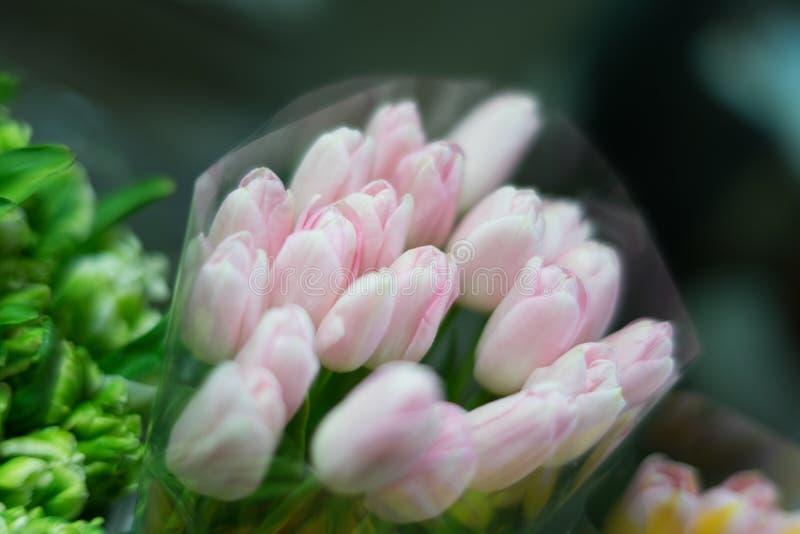 Bouquet of tulips in focus stock images