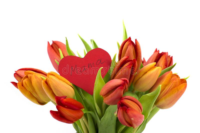 Bouquet of tulips and heart royalty free stock photography