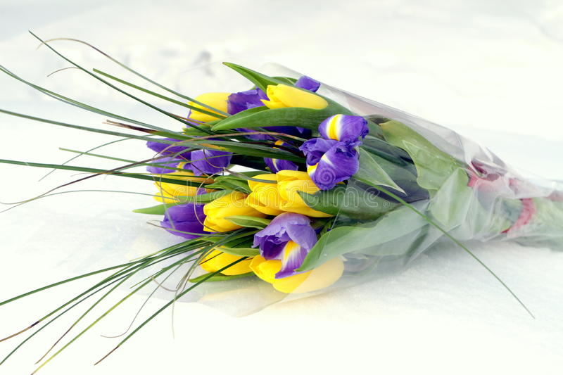 Bouquet of tulips and irises stock images
