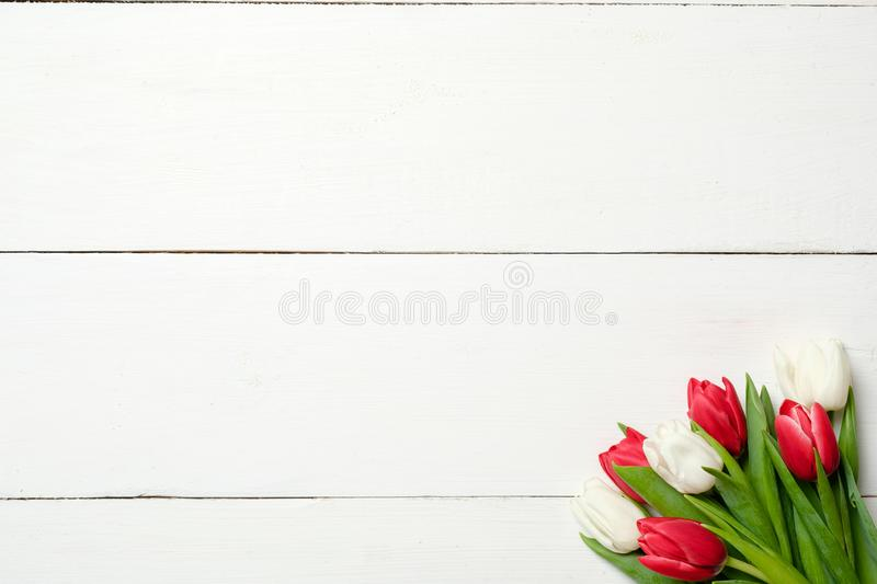 Bouquet of tulips at right corner on white wooden background . Top view, frame, border, copy space. Greeting card for womans day,. Mothers day, birthday, easter stock image