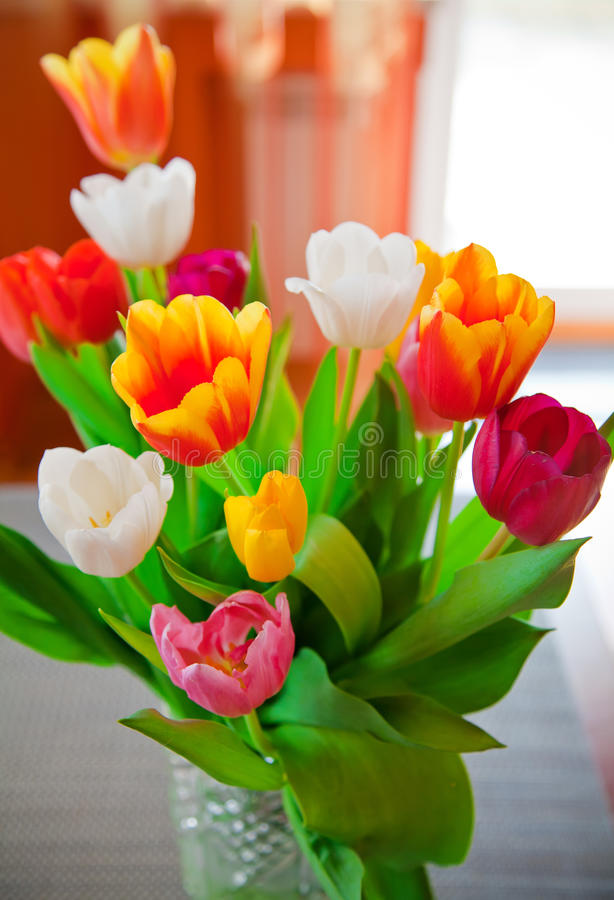 Bouquet of Tulips. A bouquet of tulips of various colours in a vase stock images