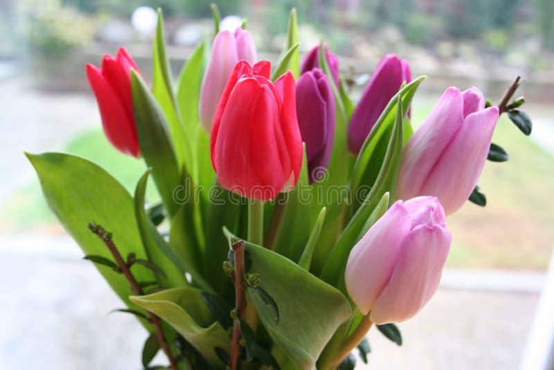 Bouquet van Tulips in verschillende kleuren stock afbeelding