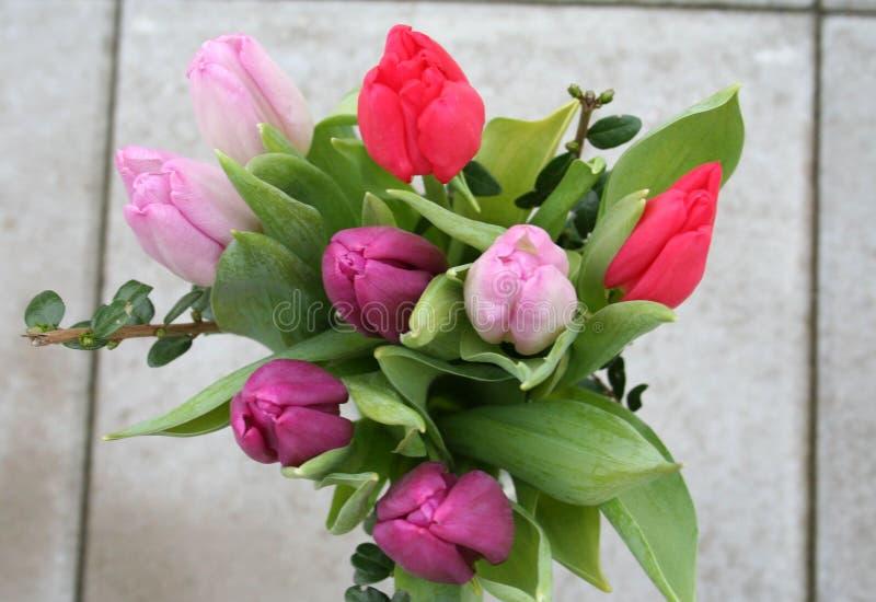 Bouquet van Tulips in verschillende kleuren royalty-vrije stock foto's