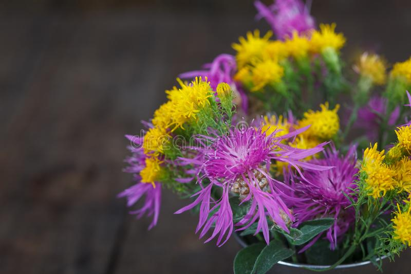 Bouquet of violet knapweeds and yellow wild flowers in a tin bucket. Autumn wild flowers stock images