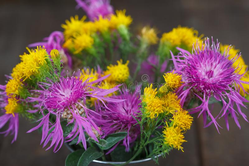 Bouquet of violet knapweeds and yellow wild flowers in a tin bucket. Autumn wild flowers royalty free stock photography