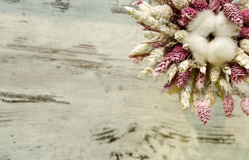 Bunch of wheat ear with cotton flower royalty free stock photo