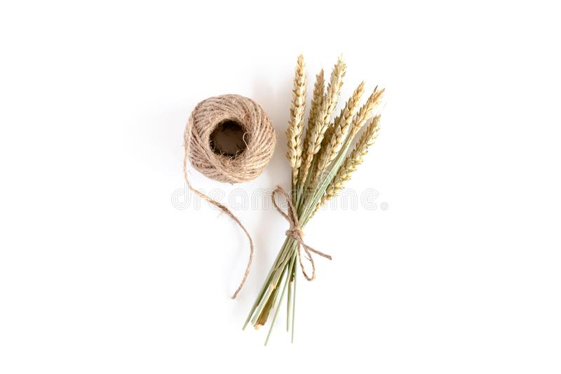 Bouquet of wheat spikelets and twine. On a white background royalty free stock photos