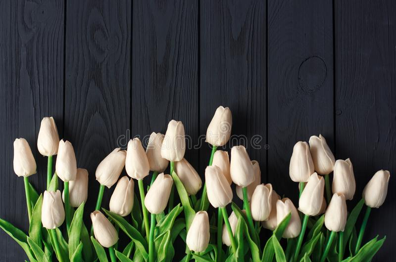 A bouquet of white and biege tulips, on a black wooden background, flat, top view copy space. stock images