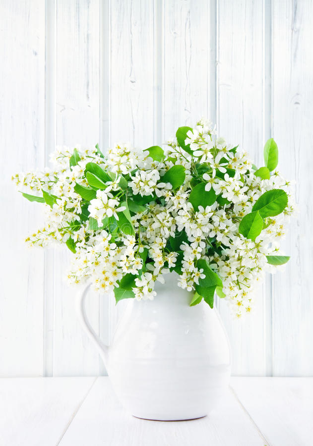 Bouquet of white bird cherry branches. In a ceramic jug on vintage wooden table royalty free stock images