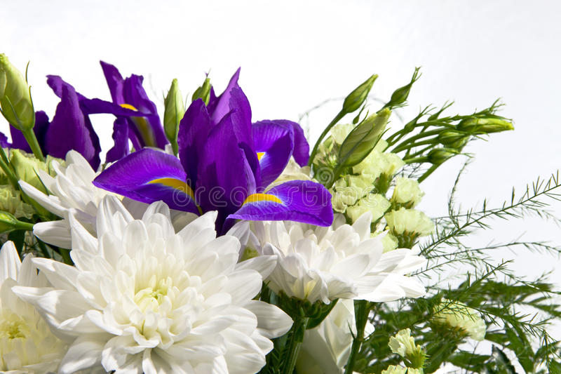 Bouquet Of White Chrysanthemums And Irises Stock Photos