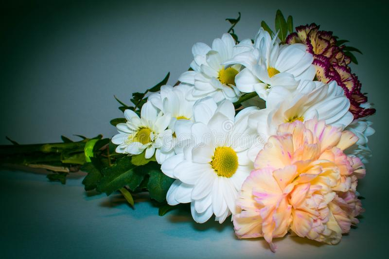 Bouquet with white Daisy flowers close up on green background royalty free stock image