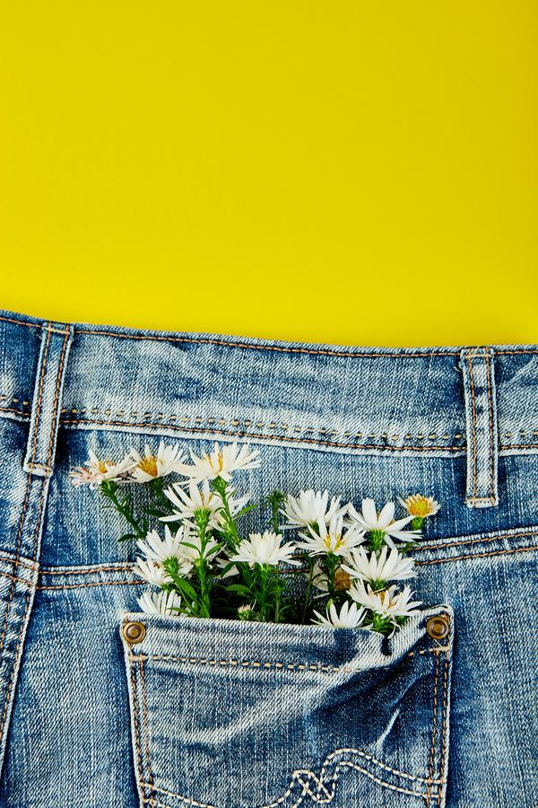 Bouquet of white flower in the pocket of a jeans on yellow background. Minimalis. Denim concept. Flat lay. Copy space. Creative. Layout for spring festive theme royalty free stock photography