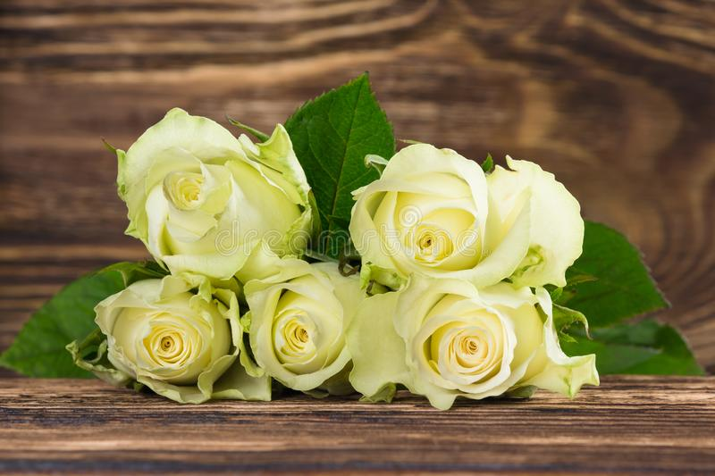 Bouquet of white fresh roses on a dark wooden background stock image