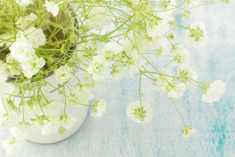Bouquet of white Gypsophila (Baby's-breath flowers), light, airy masses of small white flowers. On wooden background royalty free stock images