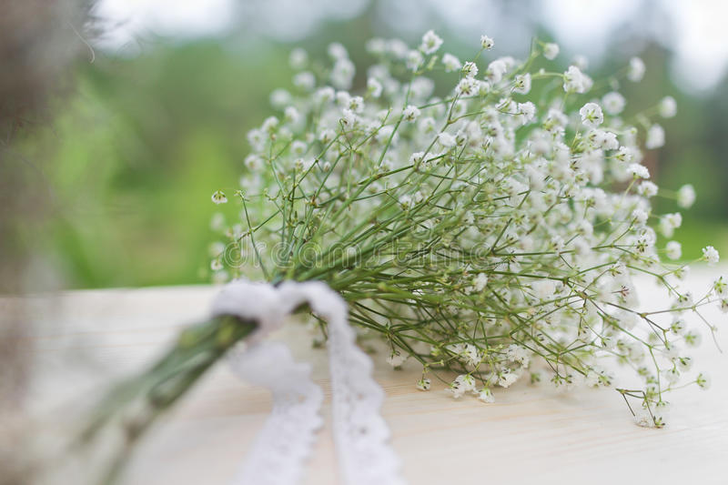 Bouquet of white gypsophila flowers stock image image of floral download bouquet of white gypsophila flowers stock image image of floral forest 47284179 mightylinksfo