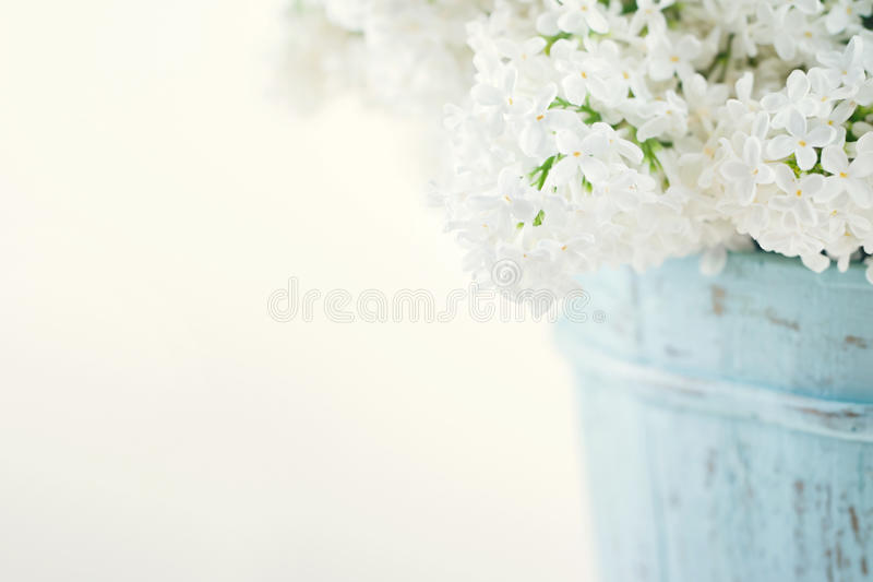 Bouquet of white lilac spring flowers. In a wooden blue vase on light shabby chic background stock photos