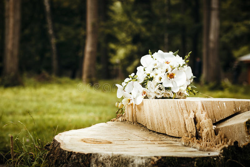 Bouquet of white orchids in forest with trees and green grass in