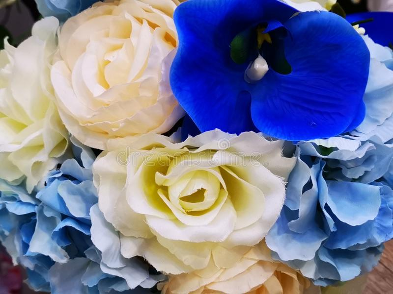 A bouquet of white roses and blue orchids stock image
