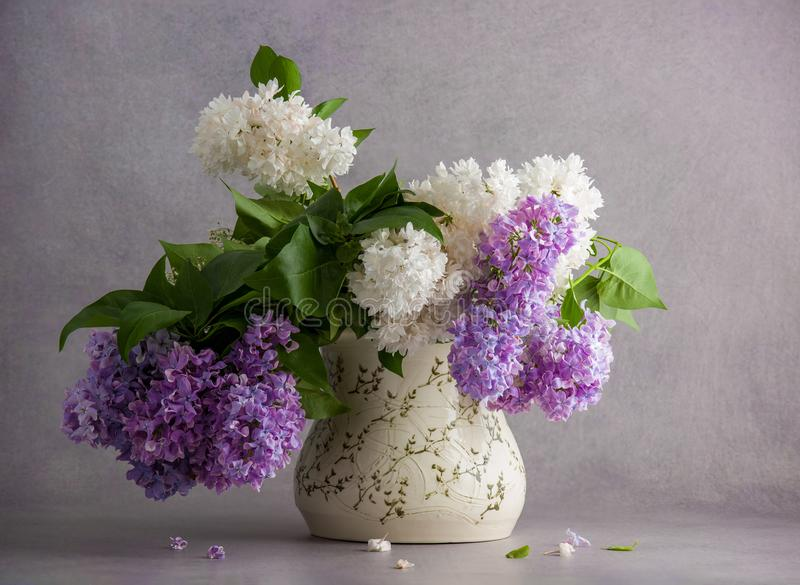 Bouquet of white and violet lilac royalty free stock image