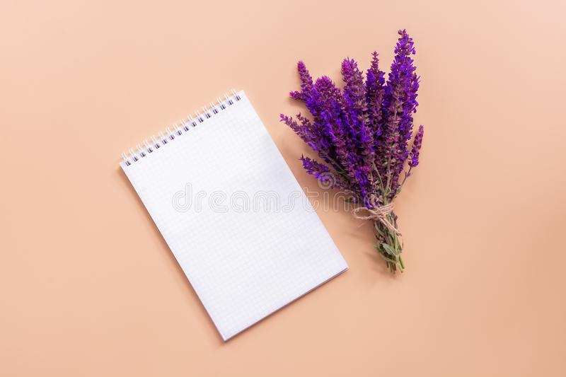 A bouquet of wild flowers of sage and a clean notepad on a pastel pink background. Creative composition. Top view, flat lay, place royalty free stock images