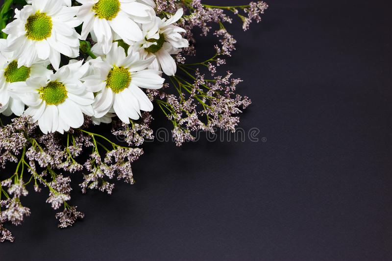 Bouquet of wild flowers of white chamomile and limonium on a dark background stock photography