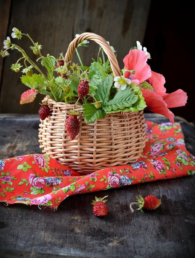 Bouquet Of Wild Strawberries In A Basket Stock Photo