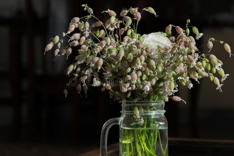 Bouquet of wildflowers in a glass mug. Minimalism. Simplicity, decoration. Bouquet of wildflowers in a glass mug. Minimalism. Simplicity, interior decoration royalty free stock images