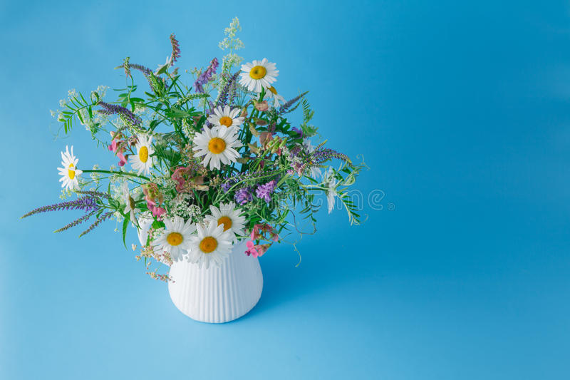 Bouquet of wildflowers in jar on plain blue background royalty free stock photo