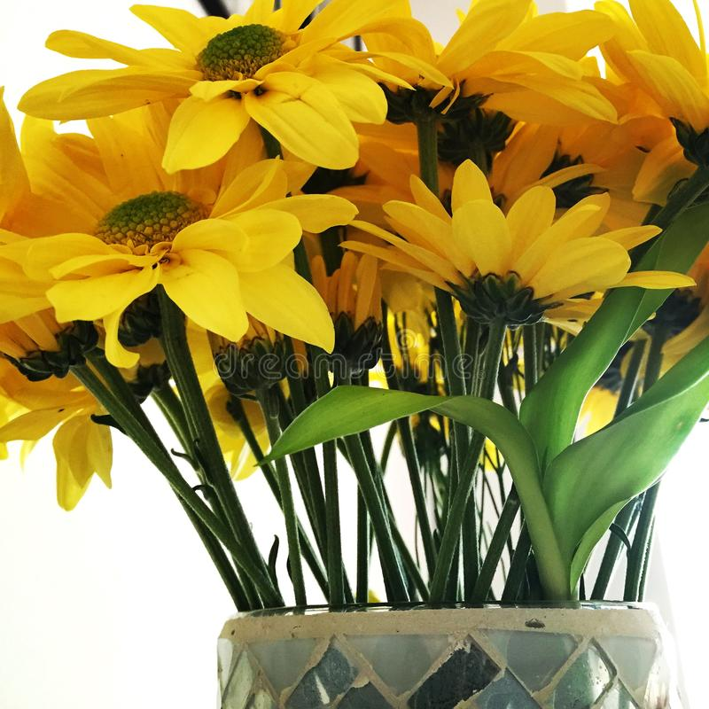 Bouquet of yellow flowers in a vase stock photo