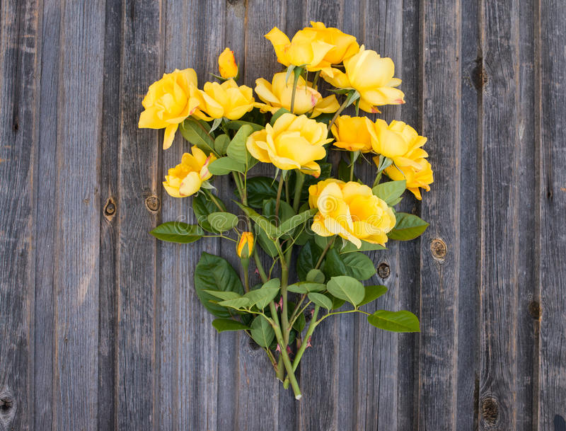 Bouquet of yellow garden roses on rustic weathered wooden backgr. Ound. Valentine`s Day and Mother`s Day background. Top view royalty free stock images