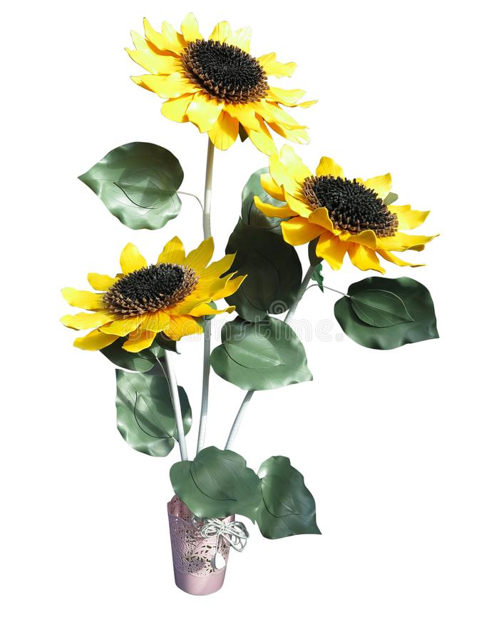 Bouquet of yellow sunflowers in a clay vase isolated on white stock image