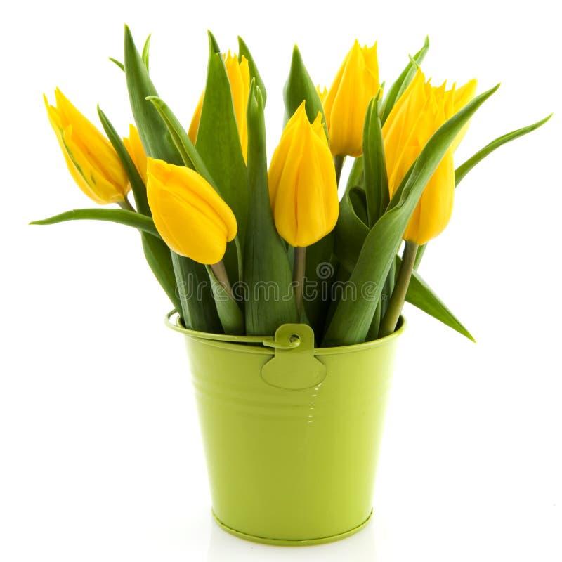 Free Bouquet Yellow Tulips Stock Photos - 13124793