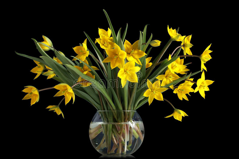 Bouquet Of Yellow Tulips In A Glass Vase Royalty Free Stock Photo