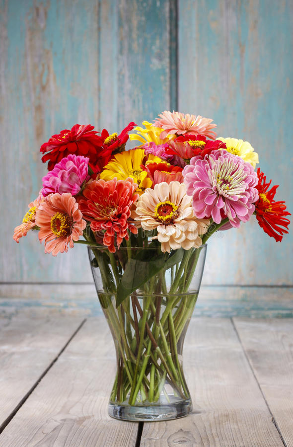 Download Bouquet of zinnia flowers stock image. Image of nature - 43775319