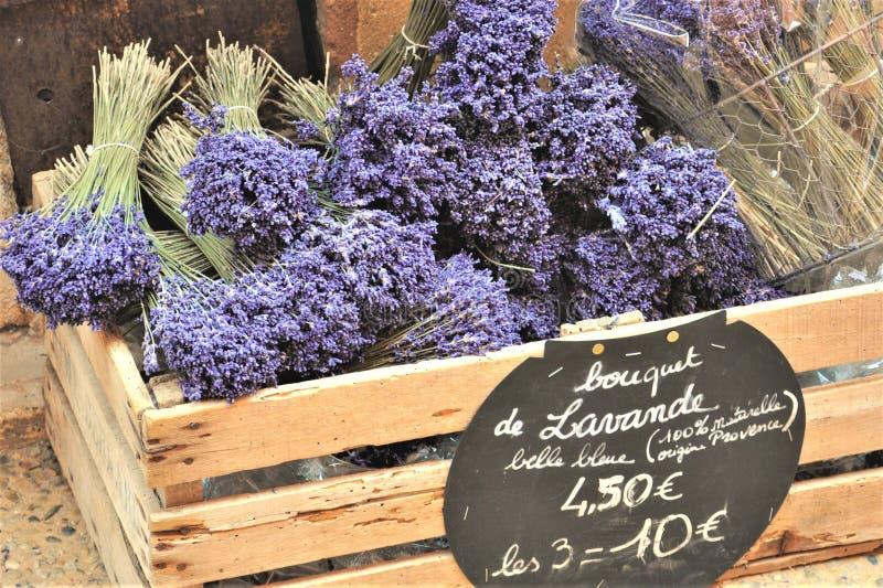 Bouquets au parfum délicieux de lavande photos stock