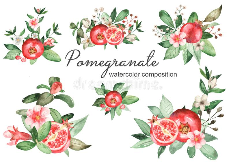 Watercolor set of bouquets, compositions of pomegranate, leaves, flowers, grains, halves of pomegranate. Bouquets compositions of pomegranate leaves, flowers vector illustration