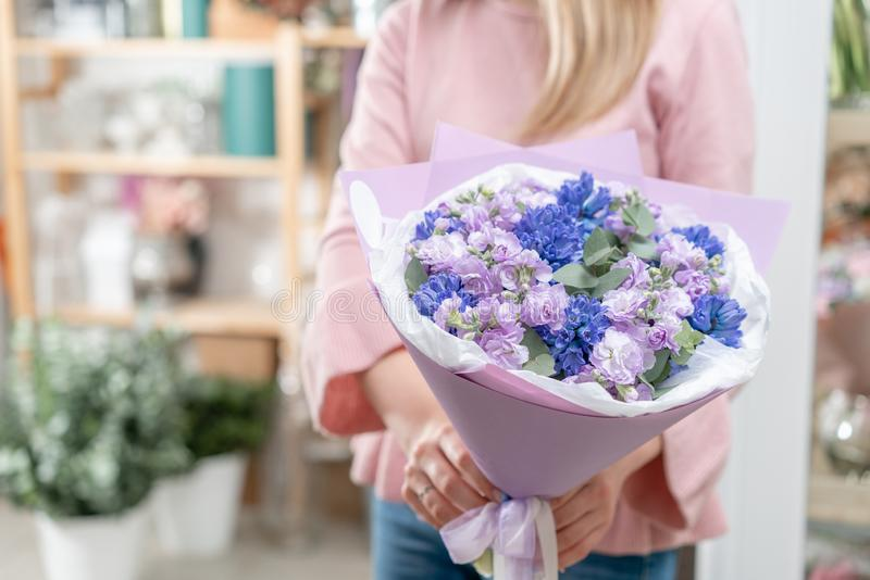 Bouquets des jacinthes bleues et matthiola de couleur lilas chez la main de la femme Fleurs de ressort de jardinier néerlandais C photos stock