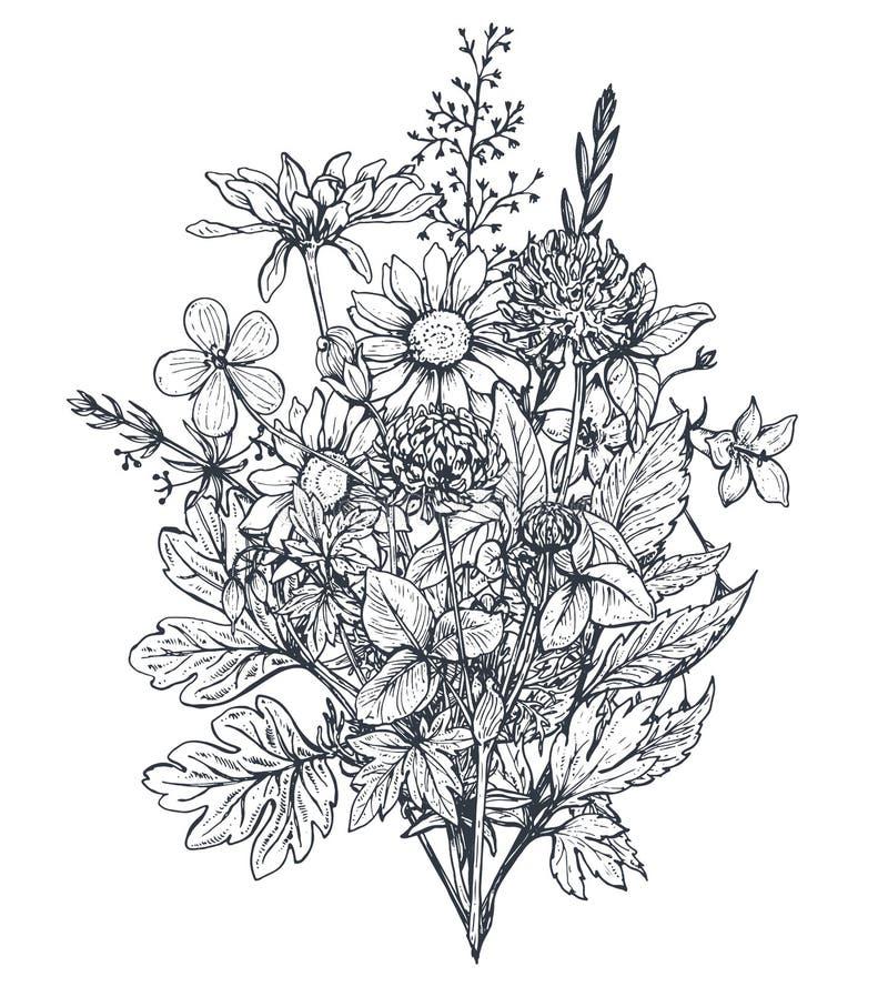 Bouquets floraux de vecteur avec des herbes et des wildflowers illustration libre de droits