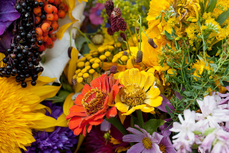 bouquets of flowers and herbs royalty free stock photography