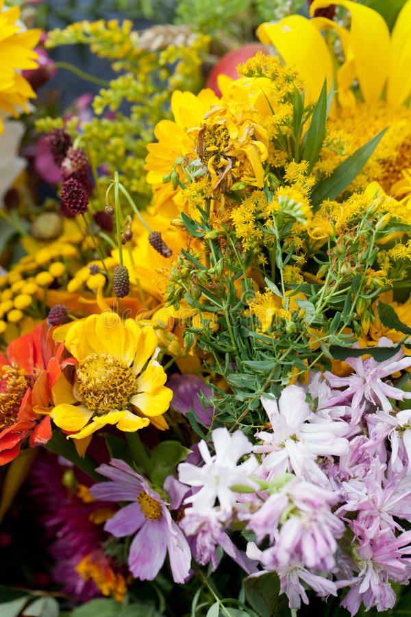 bouquets of flowers and herbs royalty free stock photos