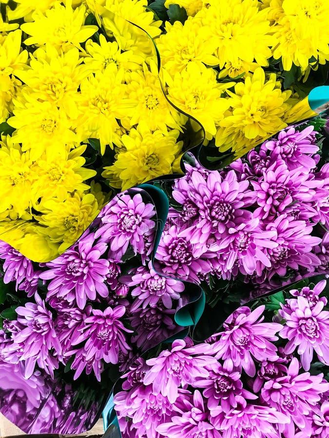 Supermarket flowers stock photo  Image of flower, retail